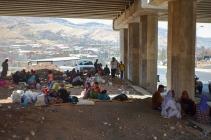 Displaced: Seeking Shelter